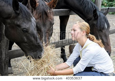 Teenage Girl Feeding Horses
