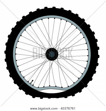 Buckled Bicycle Wheel