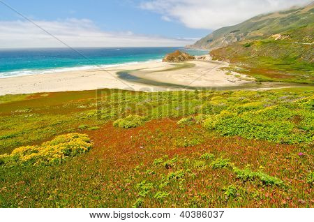 A beach at low tide at Big Sur, California