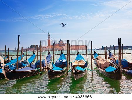 Italy. Venice. Gondolas in the Canal Grande
