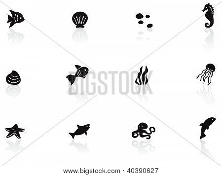 Ocean life icons