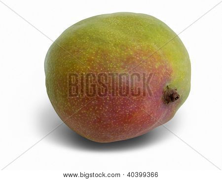 Mango Fruit In White Back