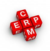 Enterprise Resource Planning (ERP) and Customer Relationship Management (CRM) crossword puzzle