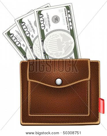 purse with money. Rasterized illustration.