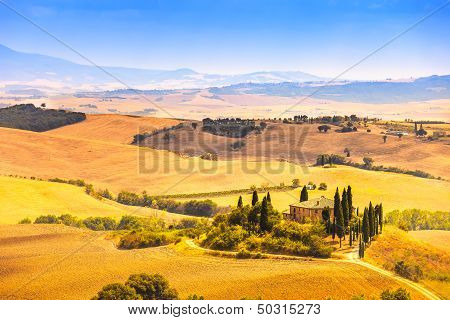 Tuscany, Farmland And Cypress Trees, Green Fields. San Quirico Orcia, Italy.