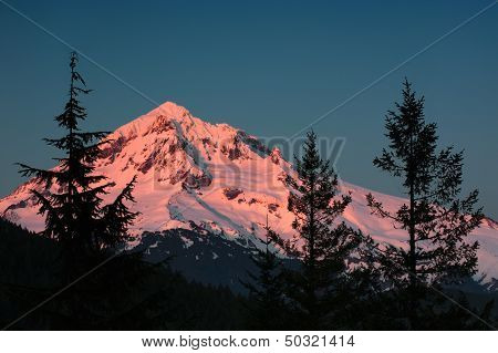 Alpenglow On Mt. Hood