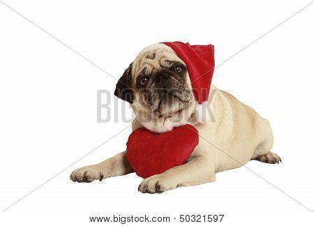 Pug Santa Claus Cap Heart