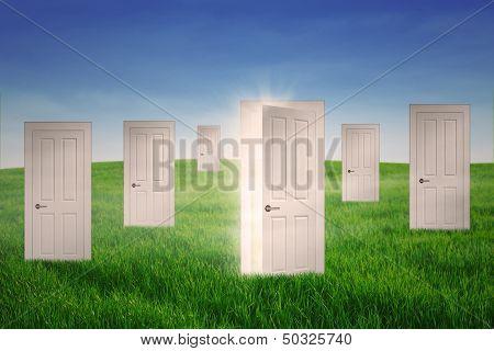 Opportunity Doors