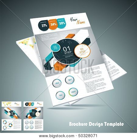 Two Magazine Cover Layout Design Vector