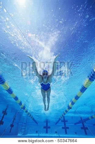 Full length of female swimmer in United States swimsuit swimming in pool