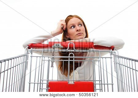 Housewife Choosing Shopping