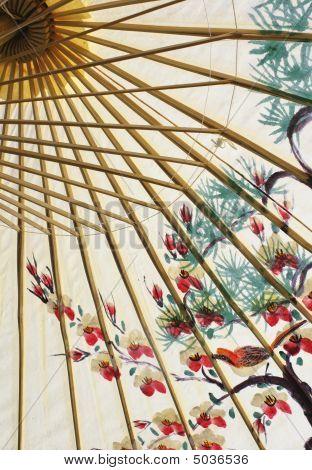 Asian Umbrella Closeup