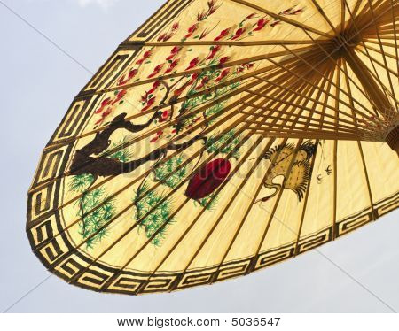 Asian Umbrella Detail