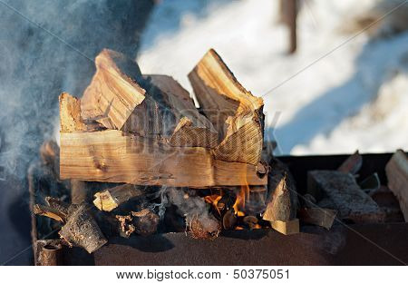 Inflames The Logs In The Grill Outdoors