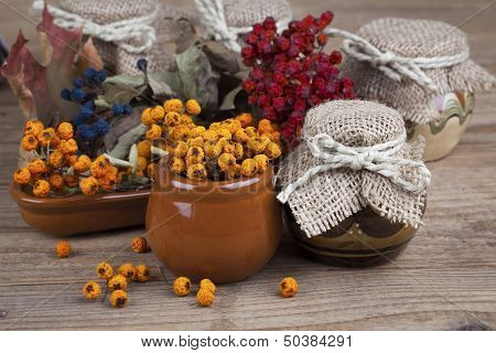 Rowan Berries In The Clay Pots, On White Background