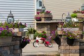 picture of tricycle  - View through an entrance of a kids red tricycle parked in the sunshine in a courtyard amongst pretty potted plants - JPG