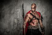 foto of legion  - Wounded gladiator in red coat with spear - JPG