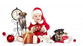 stock photo of wiener dog  - baby  wearing a santa hat and dog - JPG