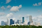 stock photo of greenery  - Houston - JPG