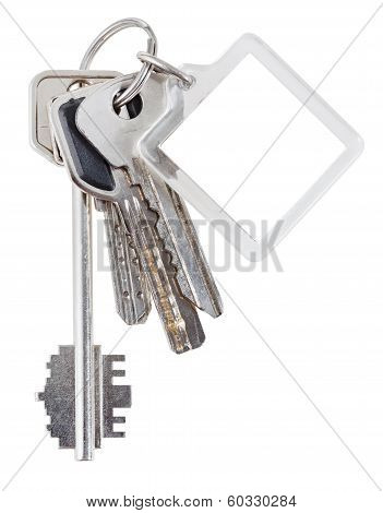 Bunch Of House Keys On Ring And Keychain