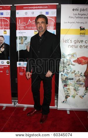 LOS ANGELES - FEB 23:  Joe Mantegna at the LA Italia Opening Night at TCL Chinese 6 Theaters on February 23, 2014 in Los Angeles, CA