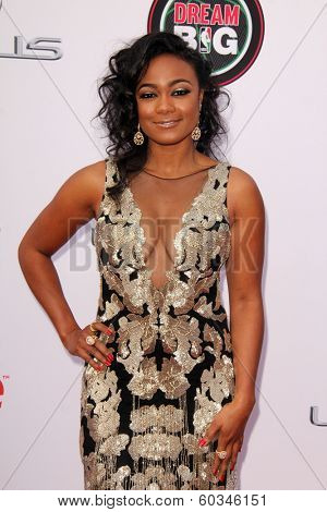 LOS ANGELES - FEB 22:  Tatyana Ali at the 45th NAACP Image Awards Arrivals at Pasadena Civic Auditorium on February 22, 2014 in Pasadena, CA