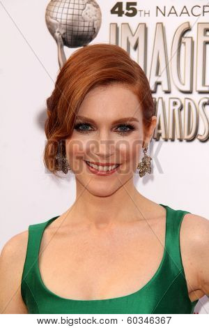 LOS ANGELES - FEB 22:  Darby Stanchfield at the 45th NAACP Image Awards Arrivals at Pasadena Civic Auditorium on February 22, 2014 in Pasadena, CA