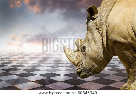 Powerful rhino.gamero chess, pieces marble floor