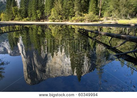 El Capitan reflected in the Merced River, Yosemite National Park, California, USA