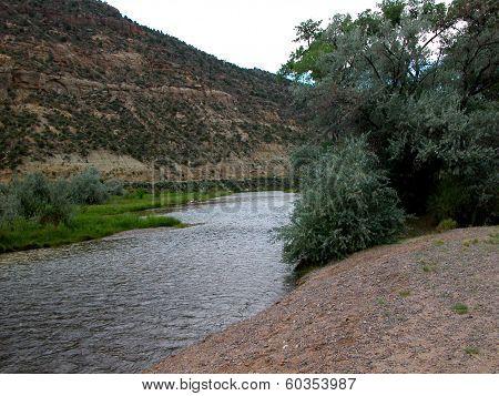 San Juan River - N.M.
