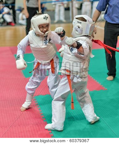 Competition On Kyokushinkai Karate.
