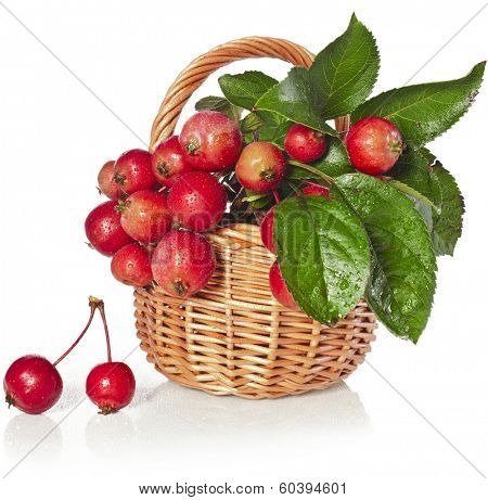 Apple fruits in wicker basket Isolated on a white background