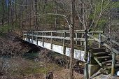 foto of brook trout  - Footbridge over mountain trout stream located in mountains of central Virginia - JPG