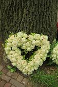 stock photo of sympathy  - Heart sympathy flower arrangement near a tree - JPG