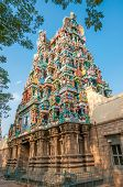 picture of meenakshi  - Temple in Meenakshi Amman Complex  - JPG