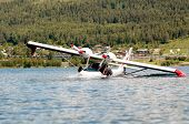 picture of hydroplanes  - white twin - JPG