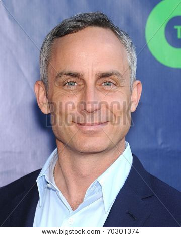 LOS ANGELES - JUL 17:  Wallace Langham arrives to the CBS-CW-Showtime Summer TCA Press Tour 2014  on July7, 2014 in West Hollywood, CA.