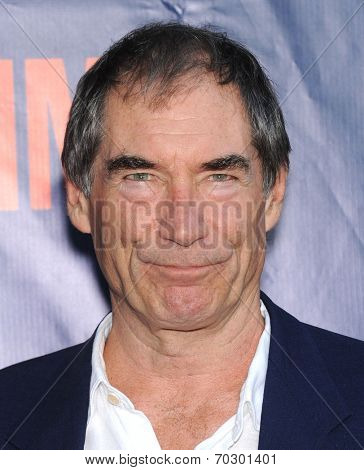 LOS ANGELES - JUL 17:  Timothy Dalton arrives to the CBS-CW-Showtime Summer TCA Press Tour 2014  on July7, 2014 in West Hollywood, CA.