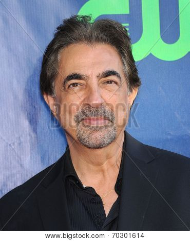 LOS ANGELES - JUL 17:  Joe Mantegna arrives to the CBS-CW-Showtime Summer TCA Press Tour 2014  on July7, 2014 in West Hollywood, CA.