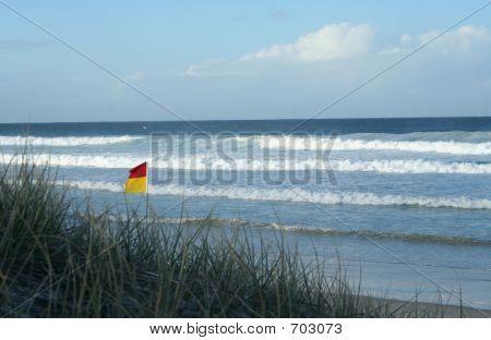 Beach With Grass  Flag
