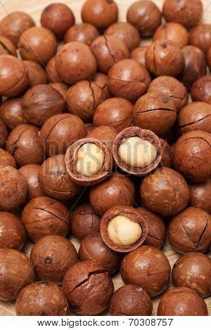 Macadamia nuts textue