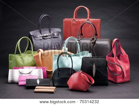 Set Of Beautiful Leather Handbags Poster