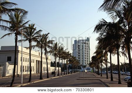 Palm Trees Line Marine Parade Outside Natal Command Headquarters