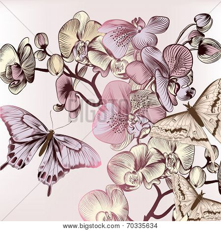 Fashion Pattern With Butterflies And Orchids