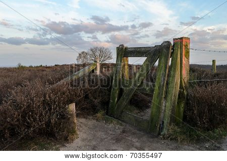 Dusk Over Heathland Area In Holland Looking Past Fence