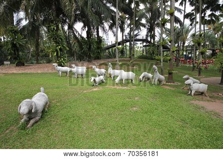 A meadow with white sheeps and grass and trees and stones in the Nong Nooch tropical botanic garden