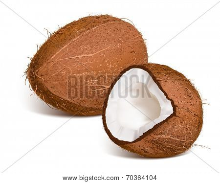 Coconut and coconut cut. Vector illustration.