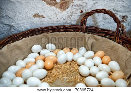Fresh brown and white free range farm eggs nestling on straw in a large basket against an old stone wall ready to be cooked for breakfast or used as a cooking and baking ingredient
