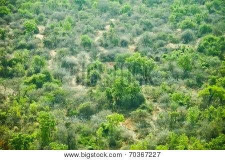 low aerial view of the wilderness of South Sudan