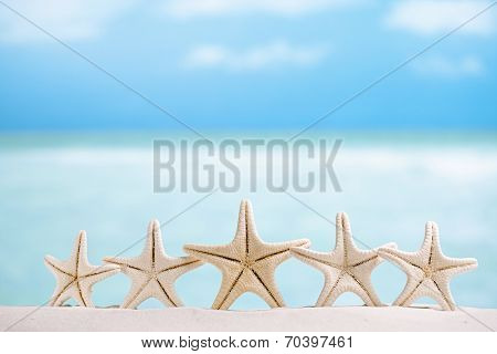 5 star fish , white starfish with ocean, boat, white sand beach, sky and seascape, shallow dof